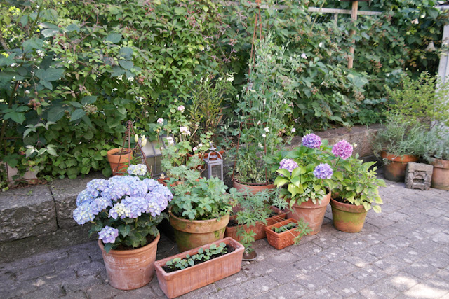 My loving home and garden: august 2012