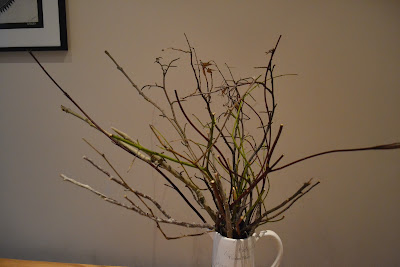 bunch of twigs for stick reindeer