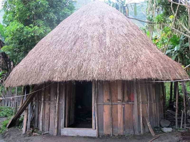 Rumah Adat Papua Barat dan Timur Honai