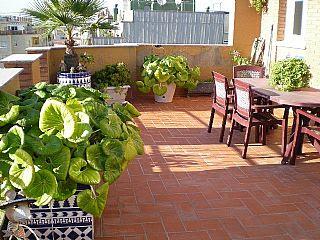 Arte y jardiner a el jard n minimalista urbano ejemplo for Jardines en azoteas