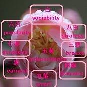 ◆九星のパーソナリティー傾向