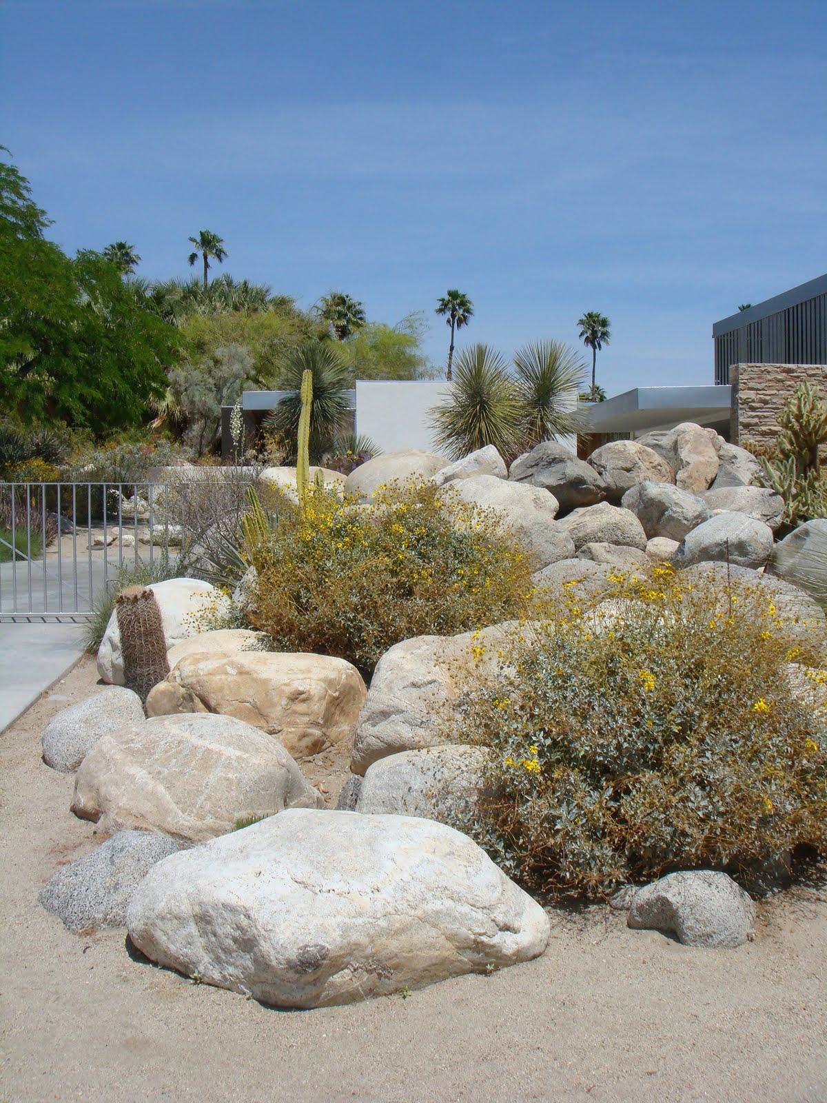 Desert landscaping s kaufmann house in palm springs credit nova68 com