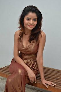 Actress Gehana Vasisth  Stills in Sleeveless Long Dress  25281.jpg
