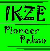 IKZE Pioneer Pekao opinie czy warto