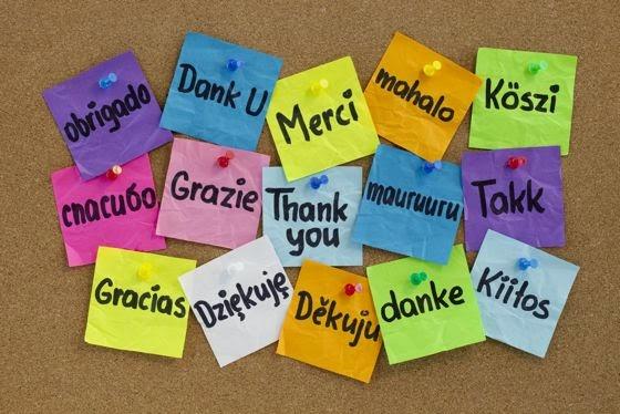 http://expatfactor.com/wp-content/uploads/2013/11/Gratitude.jpg