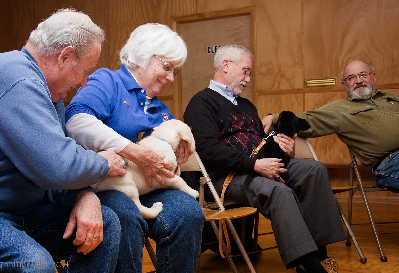 Three men and one woman sit on folding chairs. The first man and woman at the left are holding a yellow lab puppy. The third man is holding a black lab puppy.