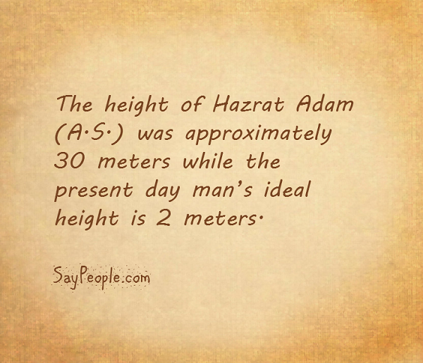 Height of Hazrat Adam (A.S.) and the present day man