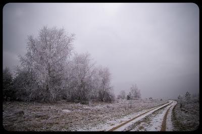 Zimowy pejzaż - Kolonia Ryczów koło Ogrodzieńca. fot. Łukasz Cyrus, Ruda Śląska.