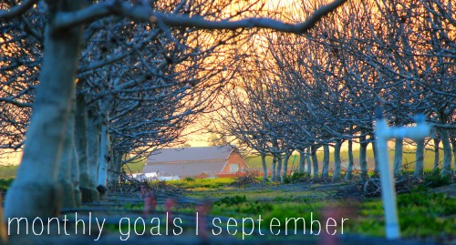 monthly goals, trees, barn, sunset