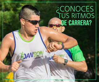 CONOCE TUS RITMOS