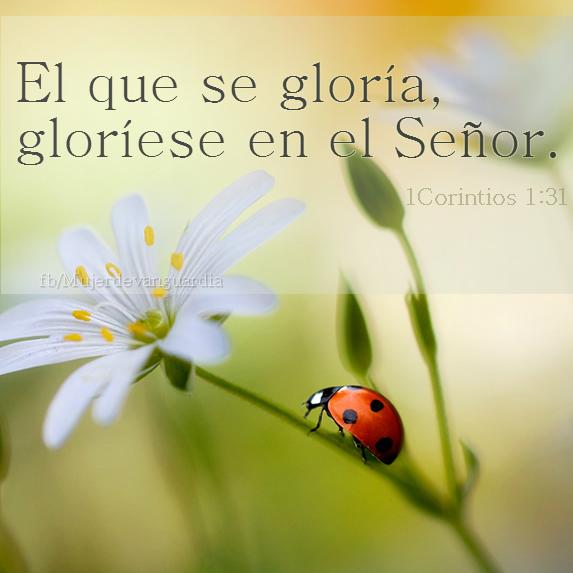 Resultado de imagen de el que se glorie que se glorie en el señor
