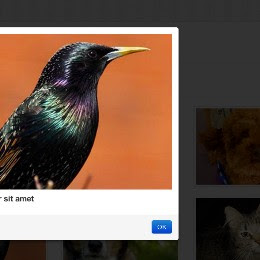 How to Build a Sortable Portfolio with Twitter Bootstrap + Quicksand.js