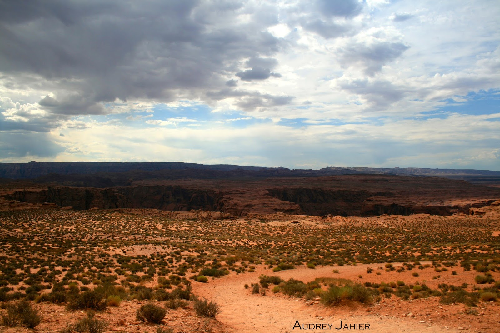 horseshoe bend-road trip-usa