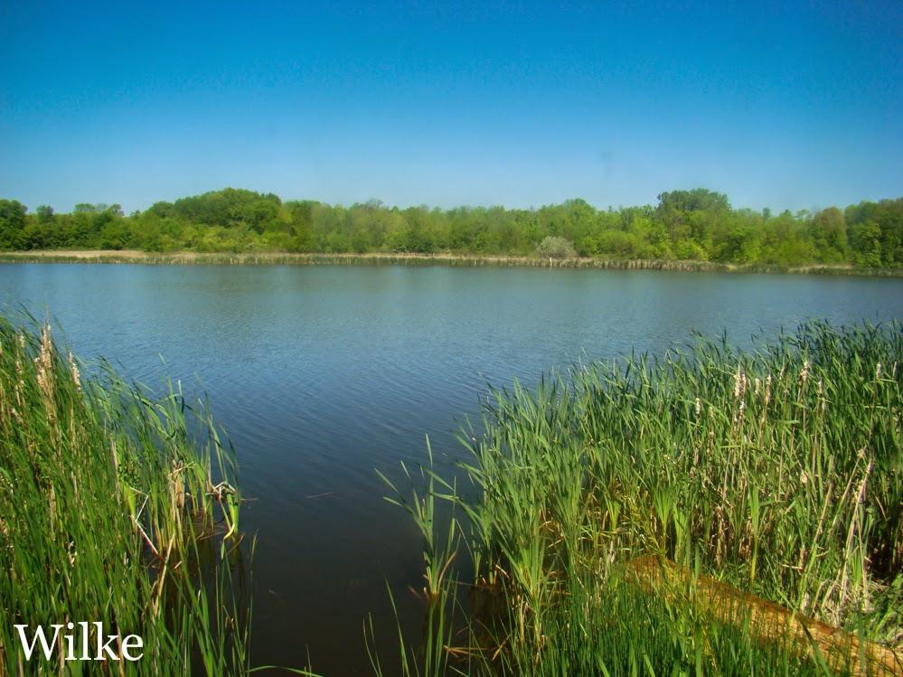 Mud Lake at Grobschmidt Park