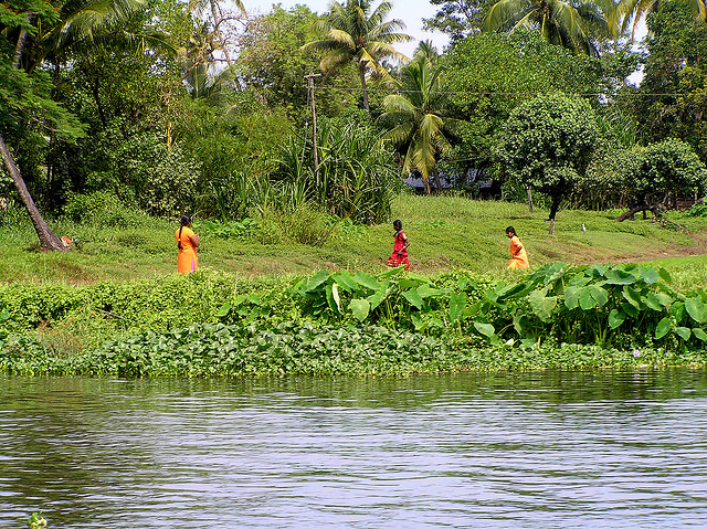 about kerala,tourist tours to kerala