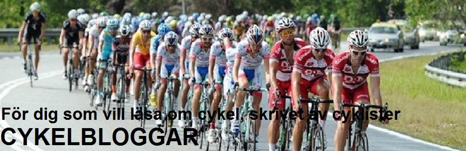 Cykelbloggar