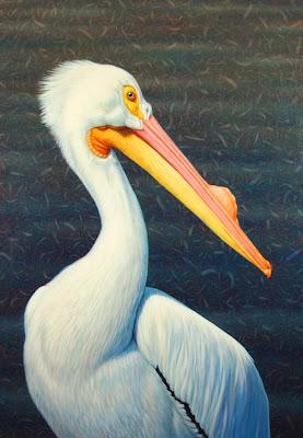 pinturas-de-aves
