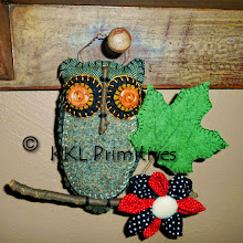 GRAY WOOL OWL