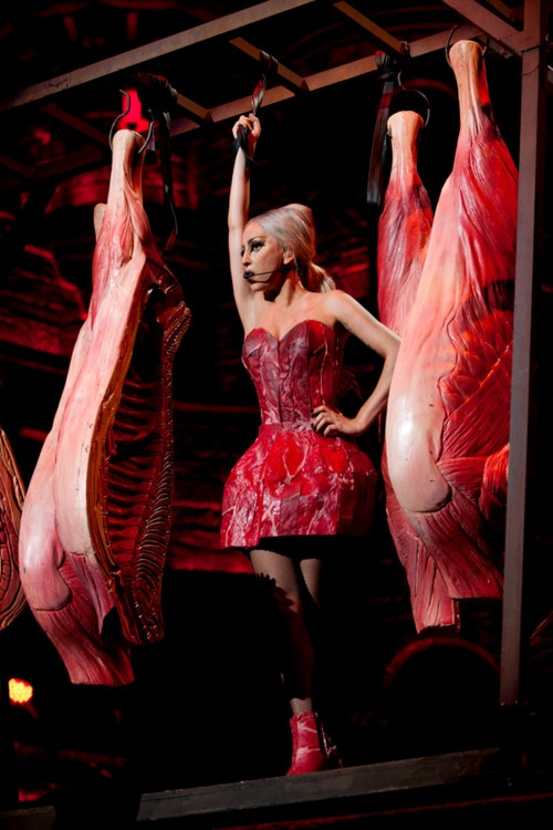 lady gaga meat dress interview