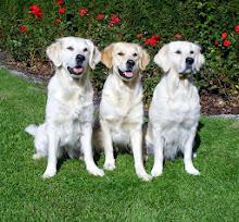 De vackraste tre