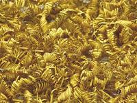 Ditemukan 2.000 Emas Spiral yang Masih Misterius