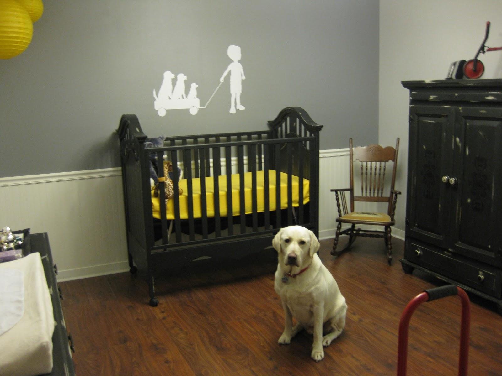 Jett S Nursery Renovation