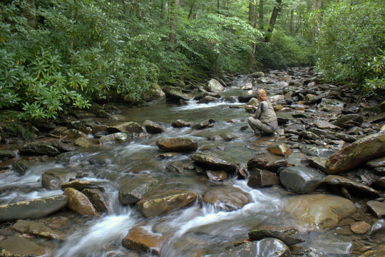 Brook trout fishing in the Great Smoky Mountains National Park