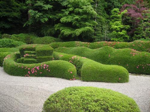topiaria em azaleia no jardim japonês; jardim japones