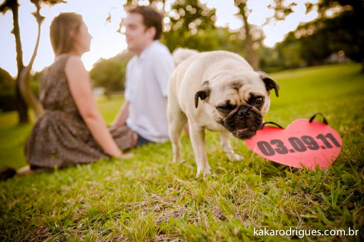 Pugs Wedding Save the Date Post Card | Zazzle