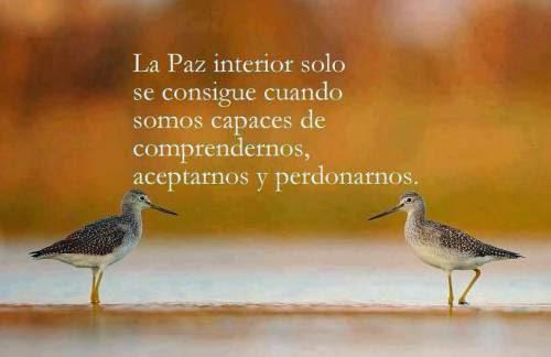 Visionesdelamatrix c mo encontrar la paz interior for Encontrar paz interior