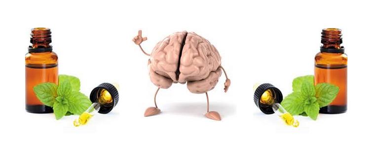 beneficios dos oleos essenciais sobre a mente e cerebro