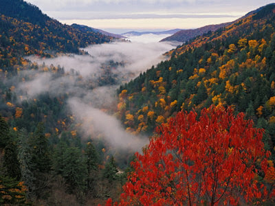 picture of smoky mountains