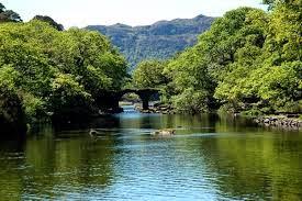 Killarney National Park, Irland
