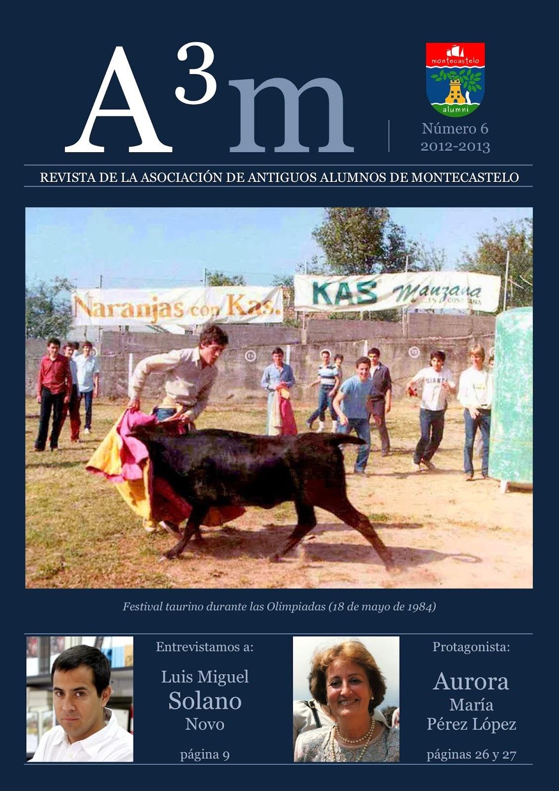 REVISTA A3M Nº6 2013