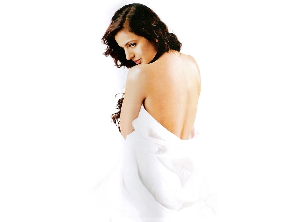 sexy nargis fakhri photos: cutie sexy hot indian babe figure actress