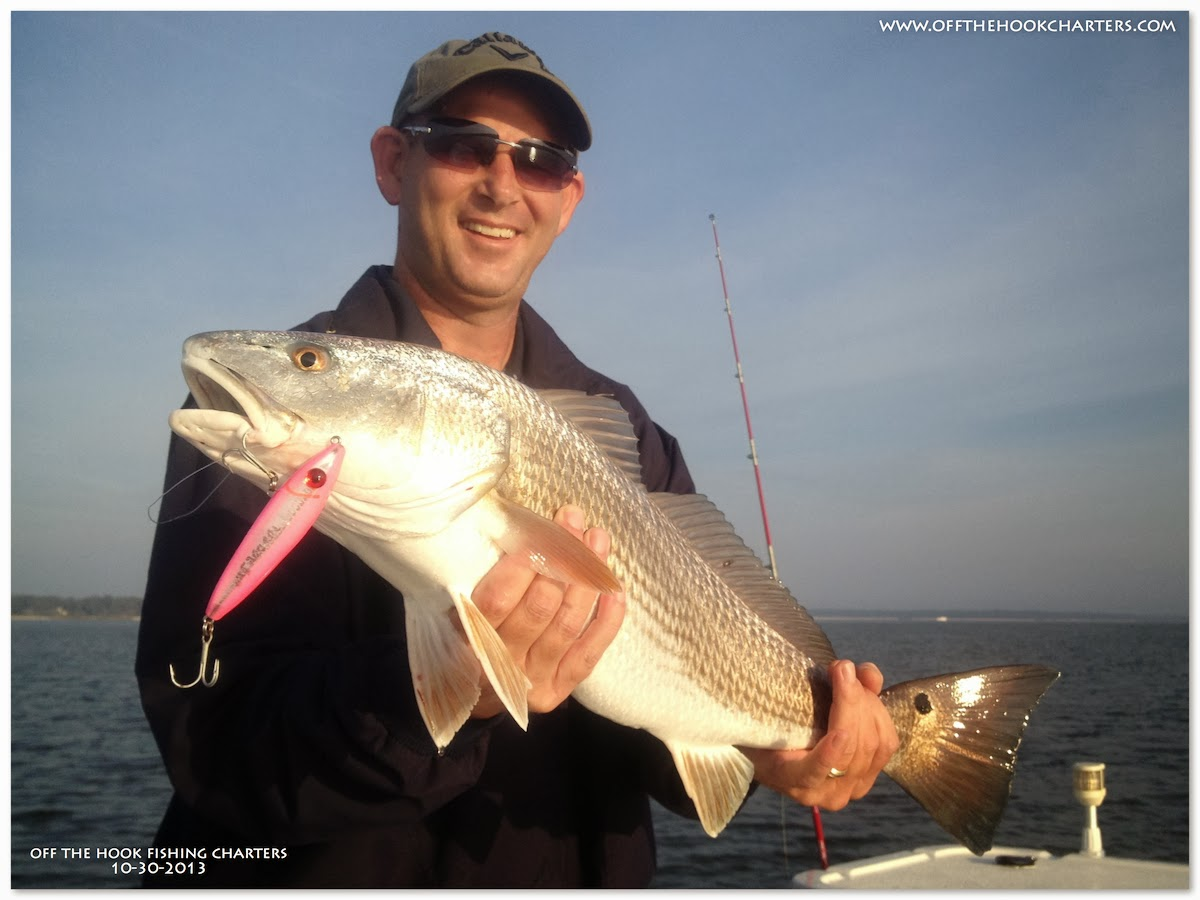Hilton head fishing with off the hook fishing charters for Right hook fishing charters