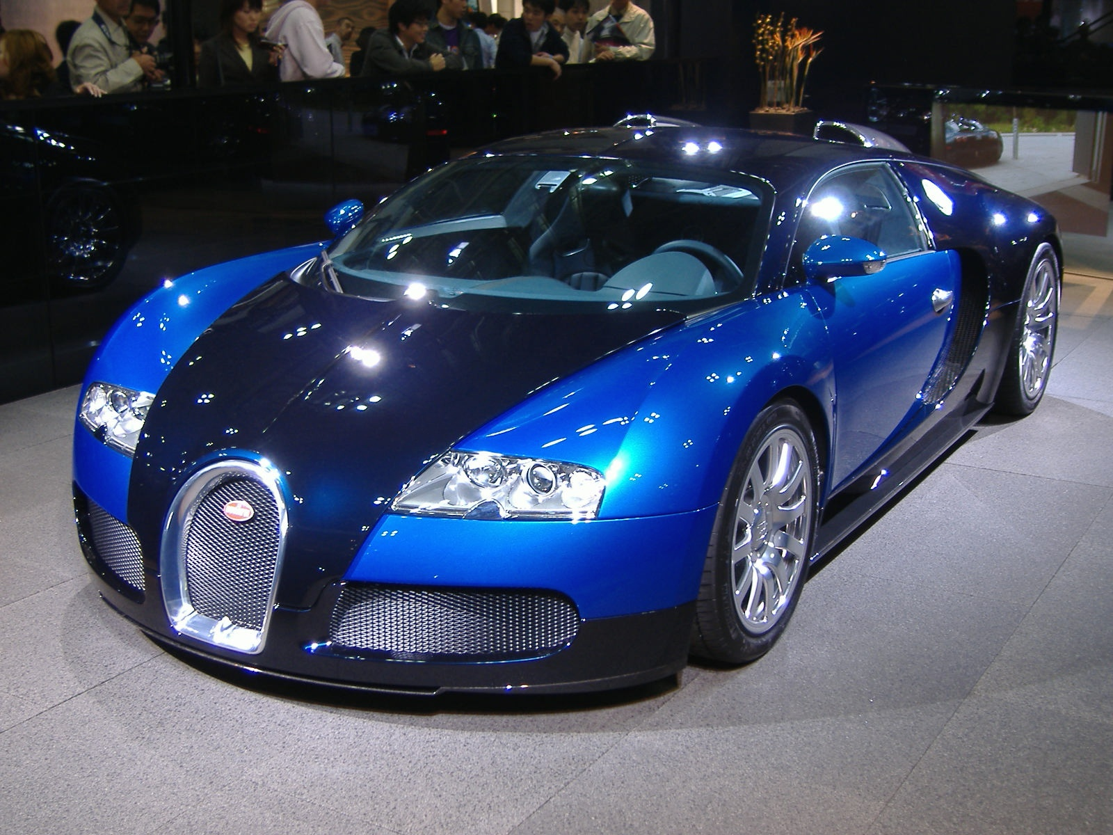 Bugatti veyron blue cool car wallpapers - Bugatti veyron photos wallpapers ...