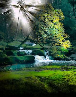 Luz del sol sobre el río - River