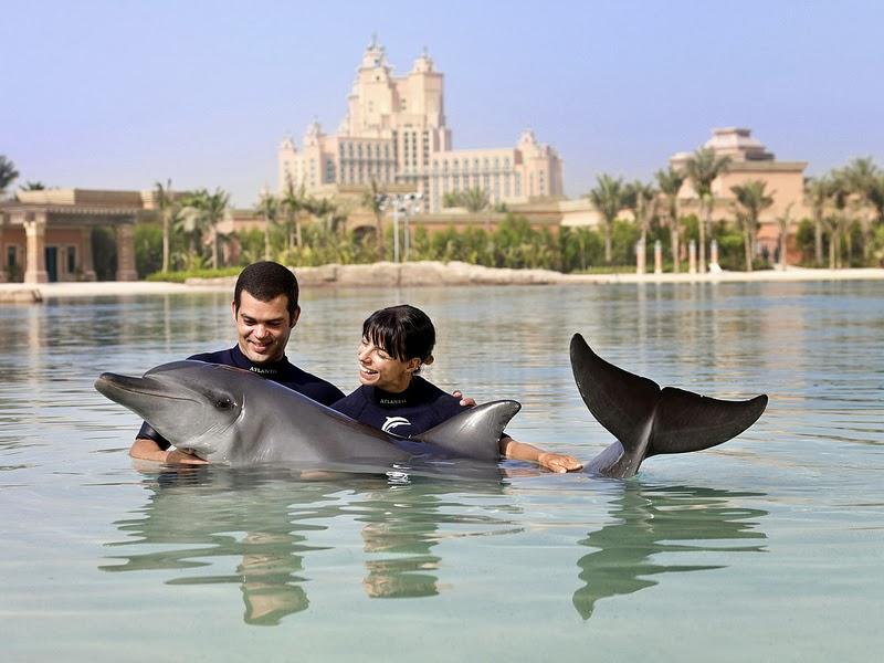 Make Some Memories in Dubai