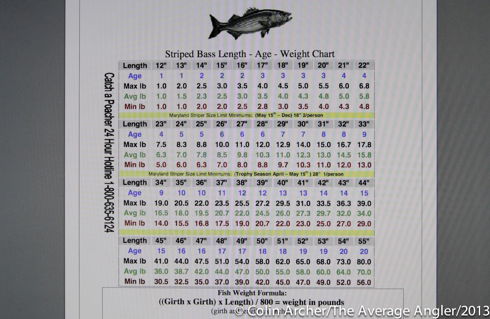 The average angler are we killing too many for Fish weight by length chart