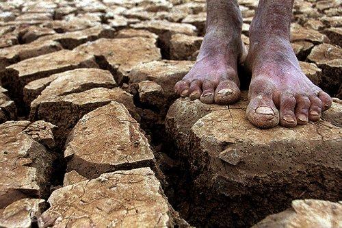 http://2.bp.blogspot.com/-D2xIUT1O5l0/T-uIqqfVK1I/AAAAAAAAB48/y1T_G3RHDyA/s1600/fotos-seca-nordeste.jpg