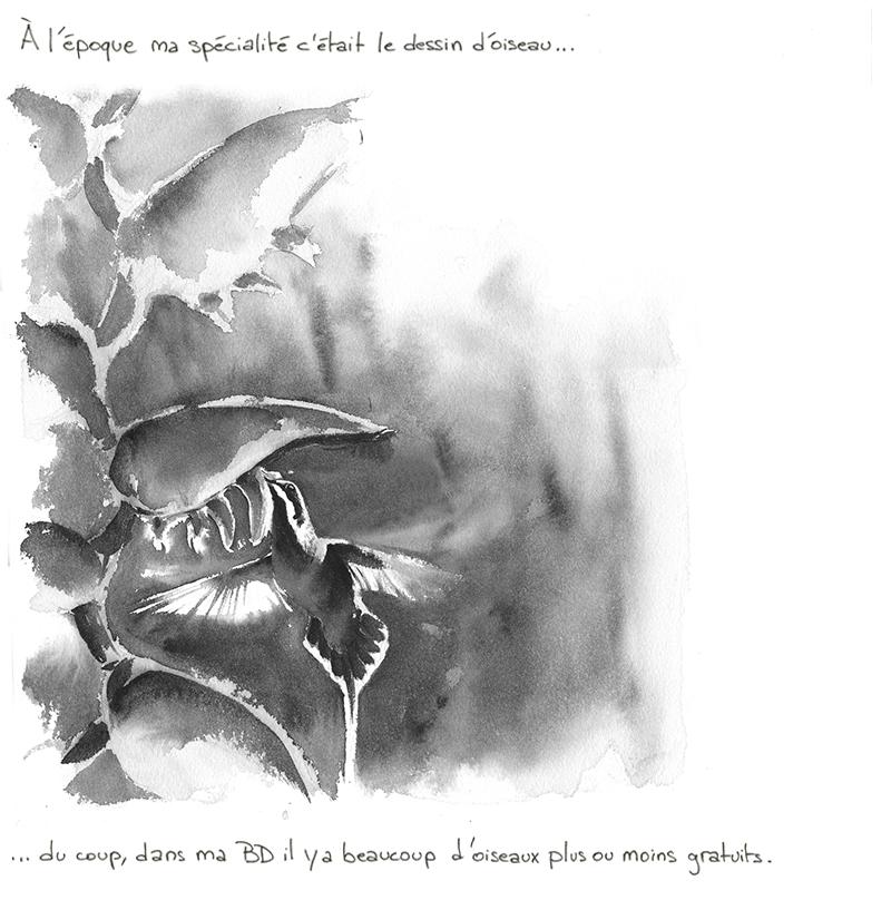 colibri ermite en vol et heliconia