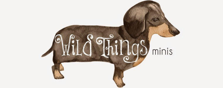 Wild Things minis on etsy