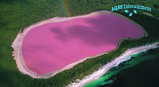 Pernah membayangkan ada danau berwarna merah muda seperti di film-film fantasi? Bagi yang sudah atau belum nggak perlu bayangin lagi deh. Danau warna merah muda memang benar-benar ada kok. Bahkan, warna danau ini bakal bikin kamu ngiler lho.