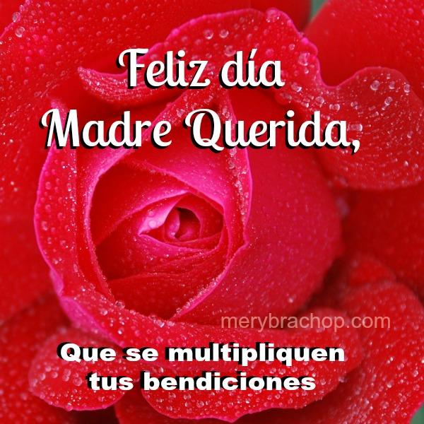Feliz Cumpleanos Querida Madre Feliz Día Madre Querida