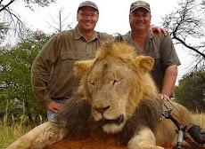 Zimbabue pide la extradición del cazador del león Cecil.