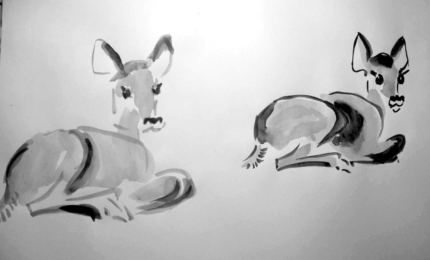 Vereinfachte Malweise Reh Malen Und Zeichnen Als Hobby