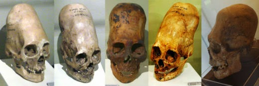 Noticias sobre antiguas culturas, descubrimientos asombrosos y diversidad de la humanidad (fusionado) - Página 3 Paracas