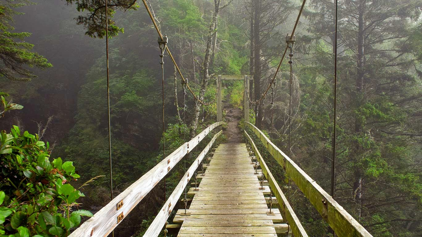 Hanging bridge across Tsocowis Creek, West Coast Trail on Vancouver Island, British Columbia, Canada (© Sergio Ballivian/Tandem Stock) 236