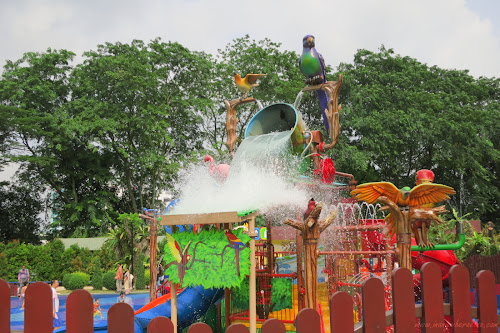 Birdz of Play, A Park for Kids!